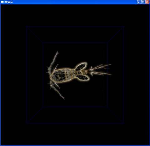 3D_01.jpg
